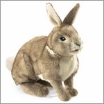 Folkmanis hand puppet rabbit, cottontail