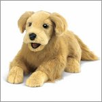 Folkmanis Handpuppe Golden Retriever